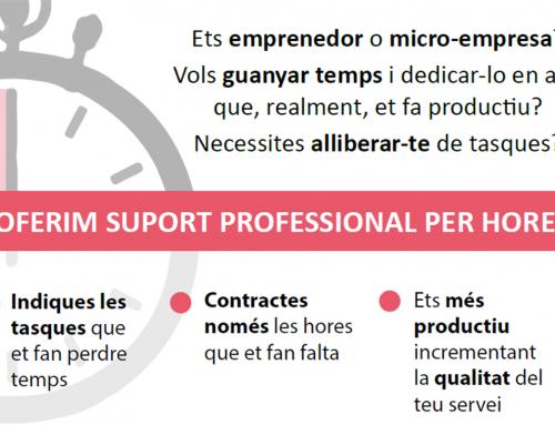 El Lluçanès ofereix suport als emprenedors a través del Centre de Recursos
