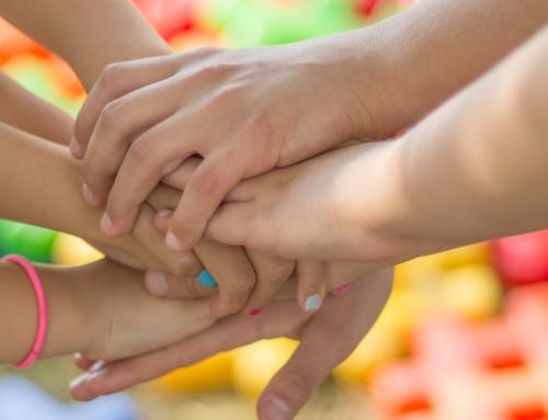 Nou projecte d'igualtat del Consorci del Lluçanès