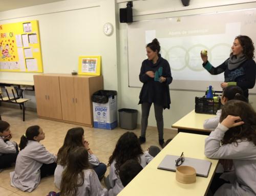Les tres cooperatives escolars del Lluçanès treballen el màrqueting i la comunicació