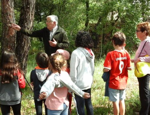 Ha començat el Passegem Junts a Sant Feliu Sasserra, una bonica iniciativa intergeneracional