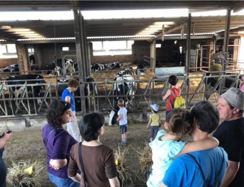 Més de 1100 persones visiten el Lluçanès durant el cap de setmana del Benvinguts a Pagès