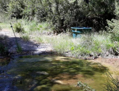 El sector ramader i agroforestal del Lluçanès pren consciència de la importància dels sistemes aquàtics