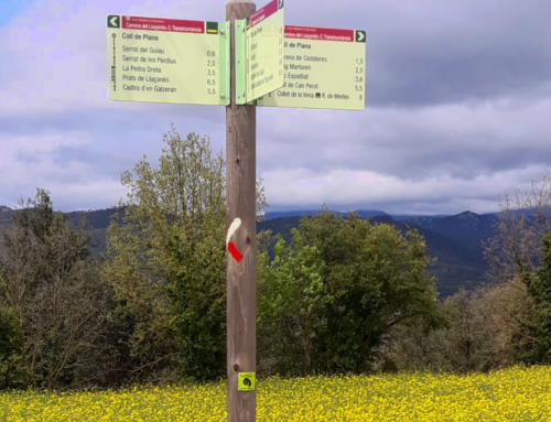 Comença la senyalització dels camins del Lluçanès