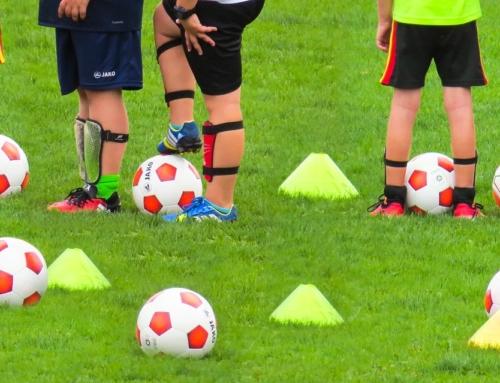 Oberta la convocatòria de beques per a activitats esportives pel curs 2020-2021